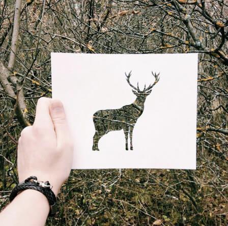 Nikolai Tolstyh, creative Instagram artist