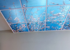 acoustic-suspended-ceiling-tiles-decorative-ceiling-tiles-ideas