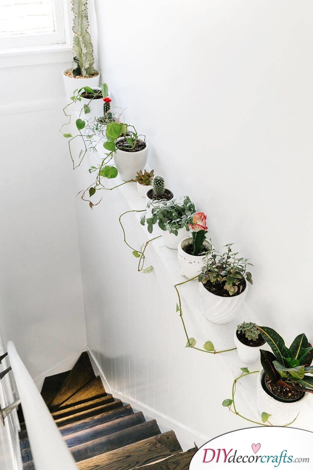Simple Ways To Freshen Up Stairways, Squeeze In Plants
