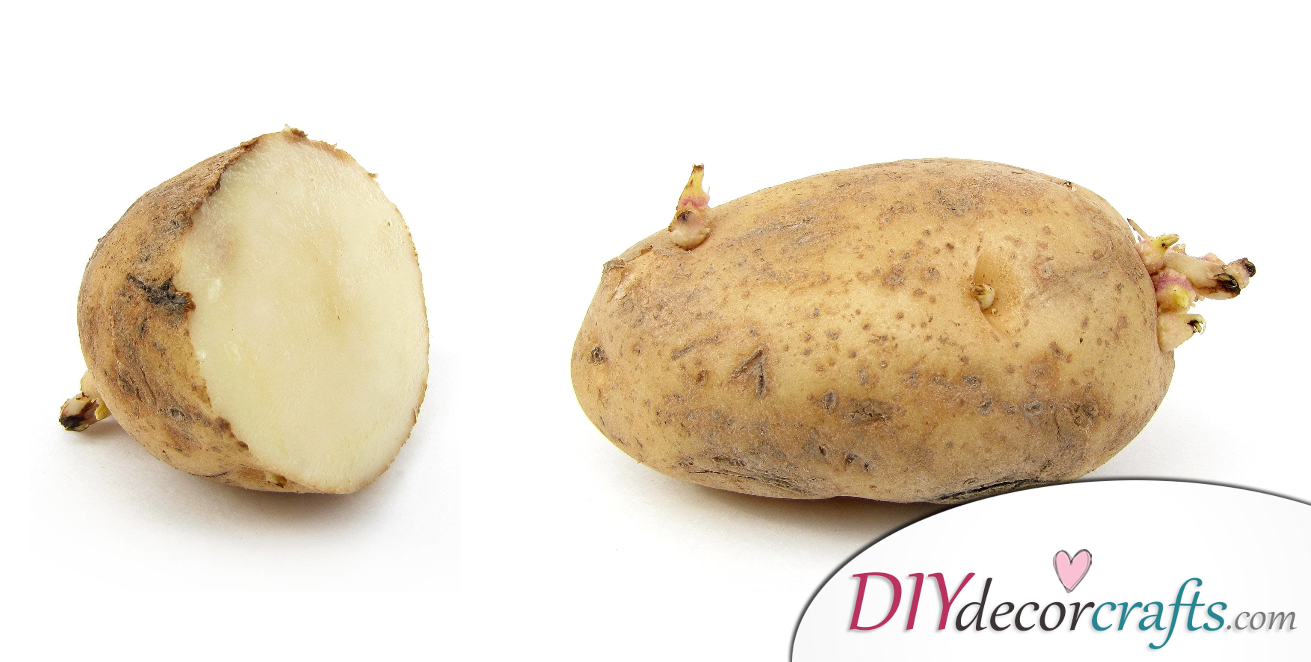 How To Get Rid Of Eye Bags Easily, Potatoes