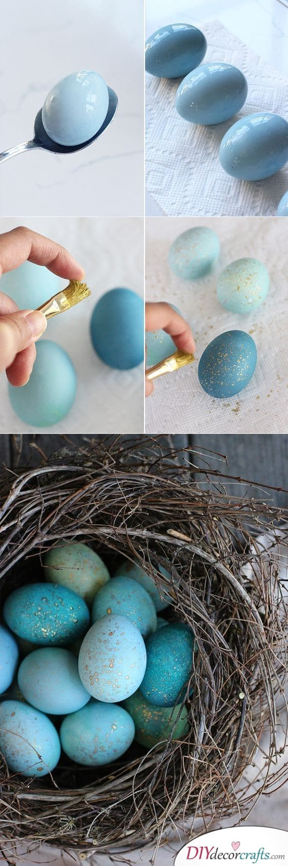 Robin Eggs - Beautiful and Blue
