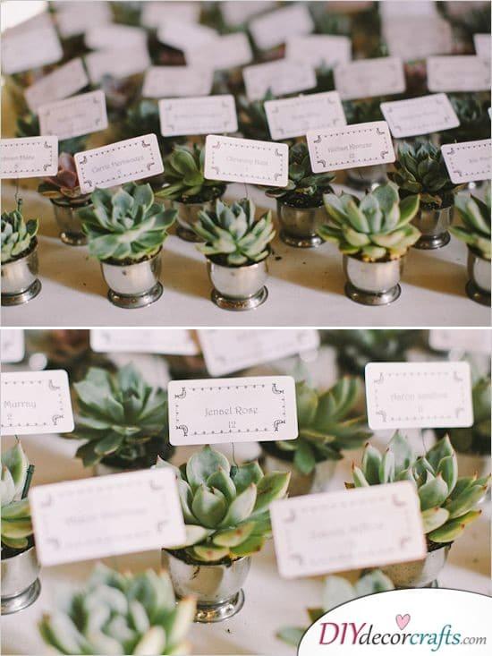 Potplants - Beautiful Wedding Thank You Gifts
