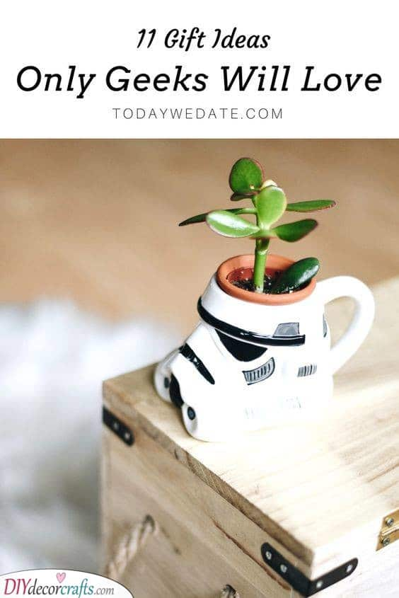 Pot Planters - May the Force be with You
