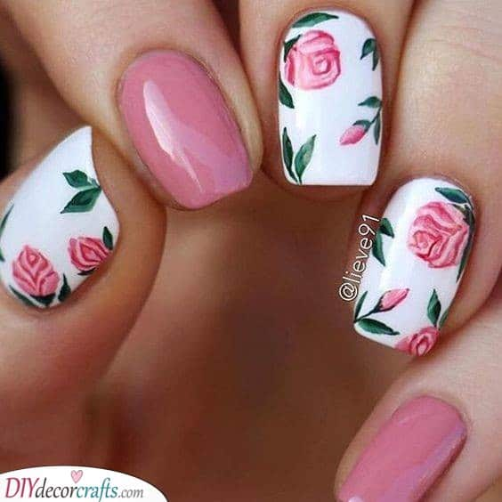 An Array of Pink Roses - Lovely and Rosy
