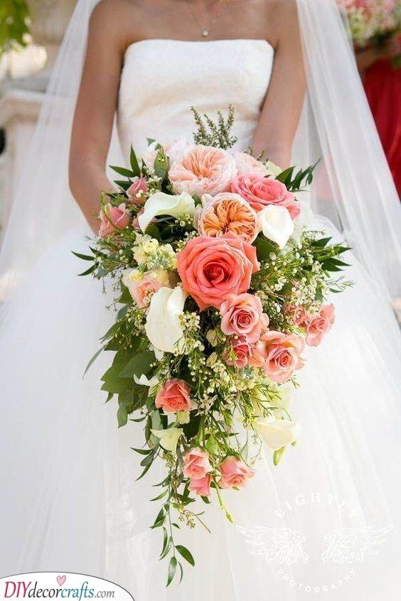 A Range of Roses - Gorgeous and Romantic