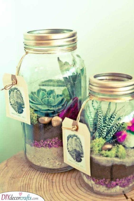 Mini Succulents in Jars - Present Ideas for Women