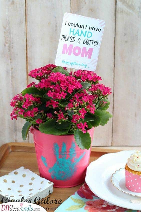 Cute Pot Plant Ideas - For Your Mother