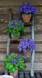 A Ladder of Flowers - Summer Garden Ideas