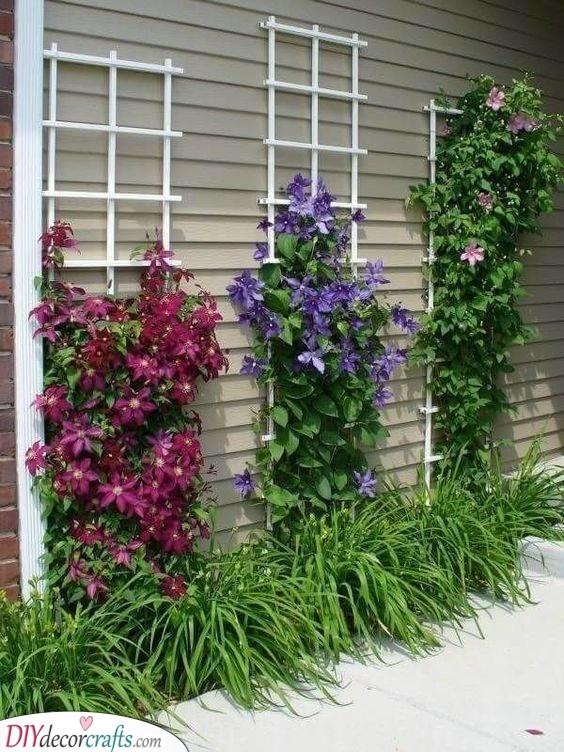 Floral Lattice Trellis - Front Yard Inspiration