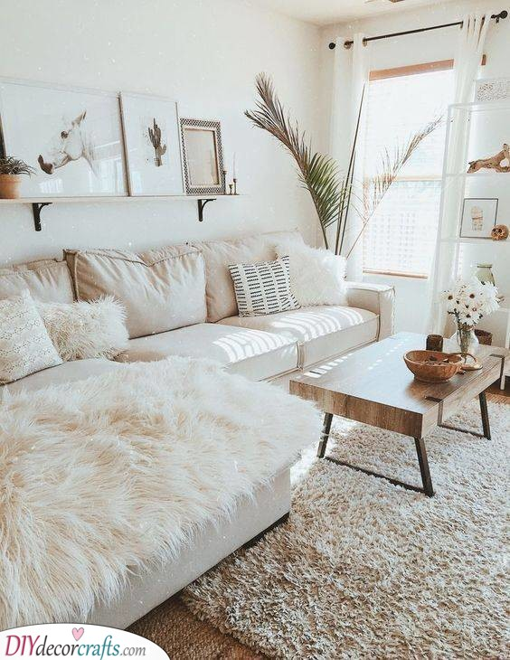 Chic and Modern - Apartment Living Room Ideas
