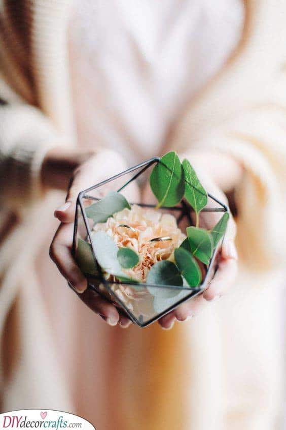 A Glass Terrarium - Modern and Natural