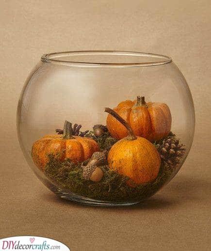 Create Your Own Terrarium - Inspired by Pumpkins