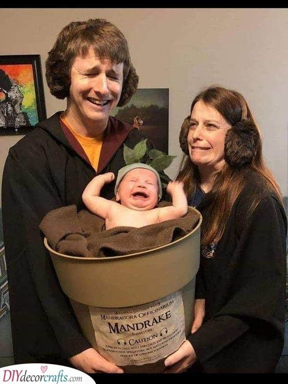 Get the Family Involved - Creative Halloween Costumes