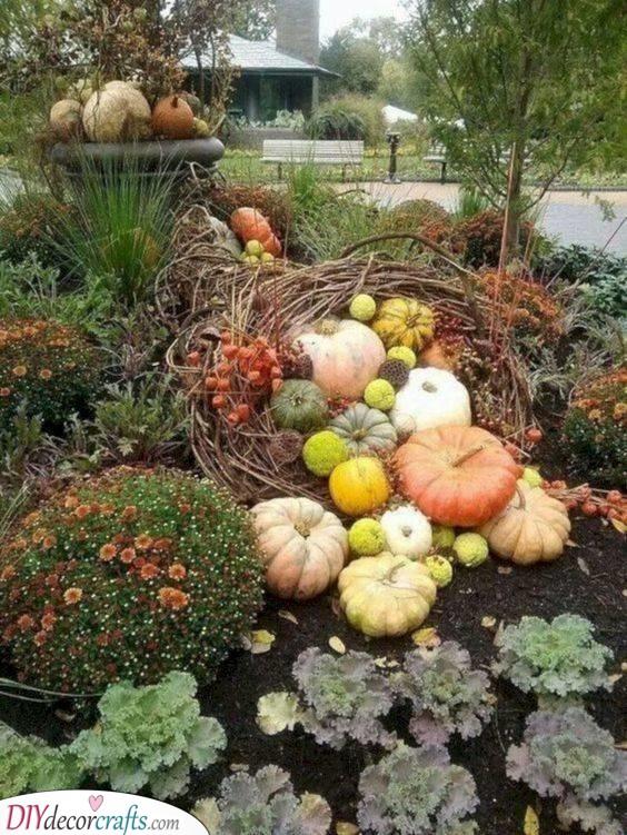 A Nest of Pumpkins - Cute Autumn Ideas