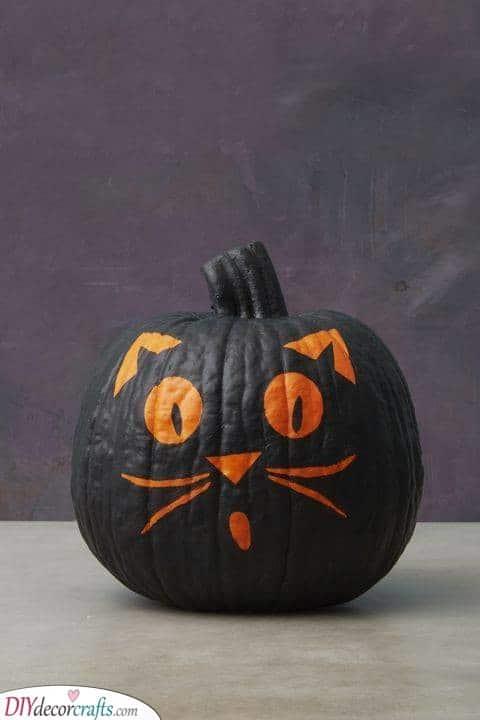 A Black Cat - A Symbol of Halloween