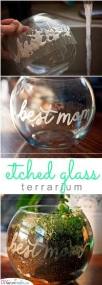 Etched Glass Terrarium - Xmas Gifts for Mom