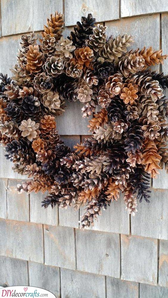 An Assortment of Pinecones - Beautiful and Natural