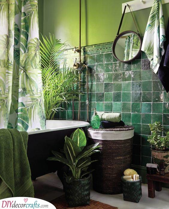 An Exotic Jungle - Filled With Greenery