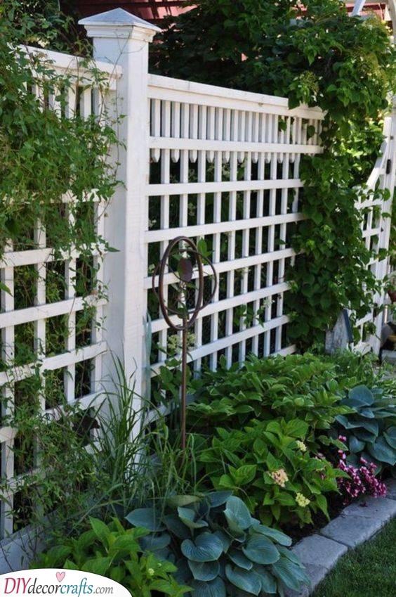 Wonderful in White - Garden Fence Ideas