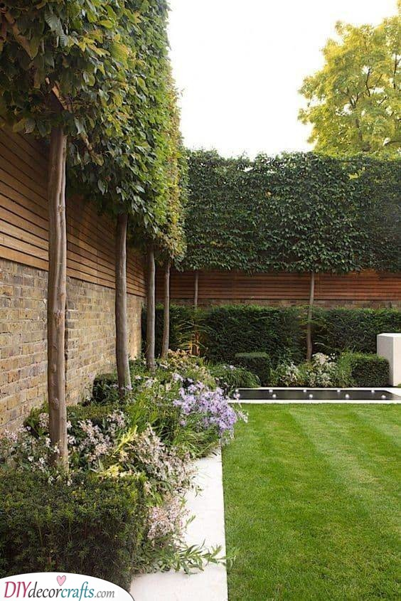 Privacy Fence Ideas for Backyard - Cheap Fence Ideas for Backyard