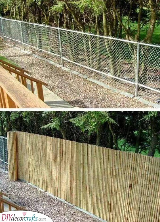 Lined with Bamboo - Creating a Bit of Privacy