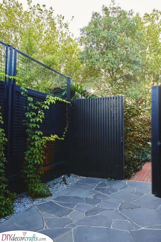 Paint it Black - Black Cheap Fence Ideas for Backyard