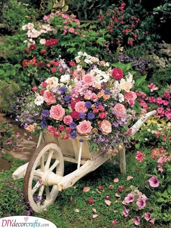 Blossoming in a Wheelbarrow - Creative and Cute