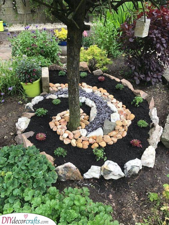 A Stunning Spiral - Succulents and Rocks
