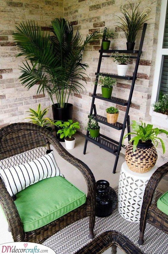 Lush Greenery - Small Front Porch Ideas on a Budget