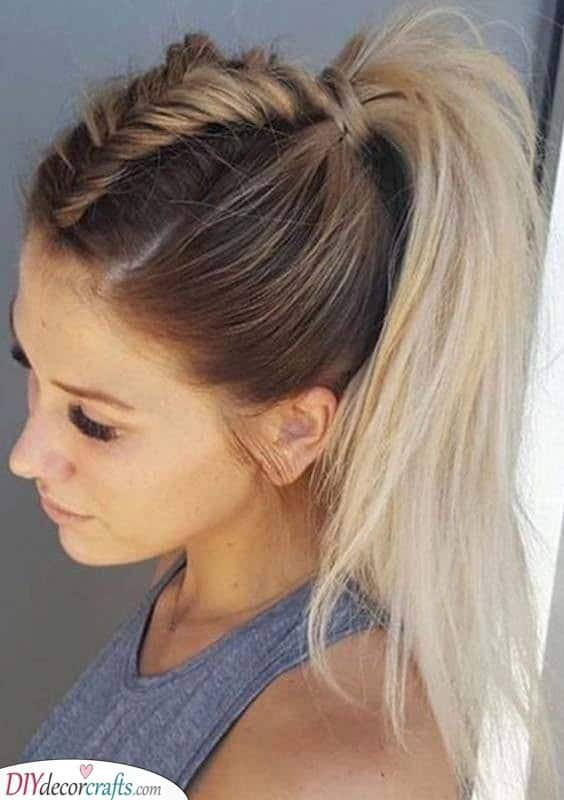Another Braided Ponytail - Stylish and Chic
