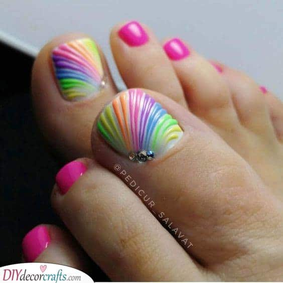 Rainbow Shells - Unique and Colourful