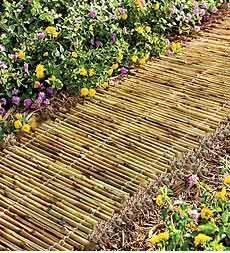 A Bamboo Path - Fantastic Garden Path Ideas