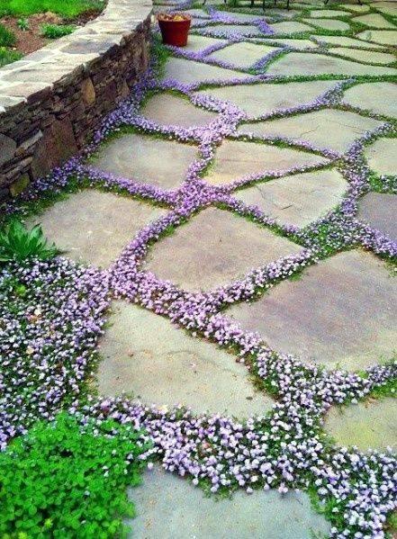Beautiful in Stone - Easy Garden Path Ideas