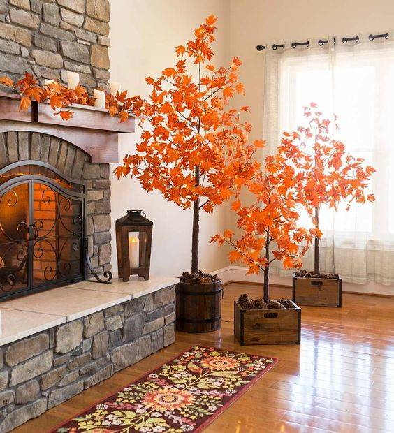 Bringing Nature Inside - Magnificent Maple Trees