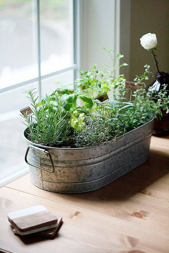 A Galvanized Tub - Introducing Farmhouse Style