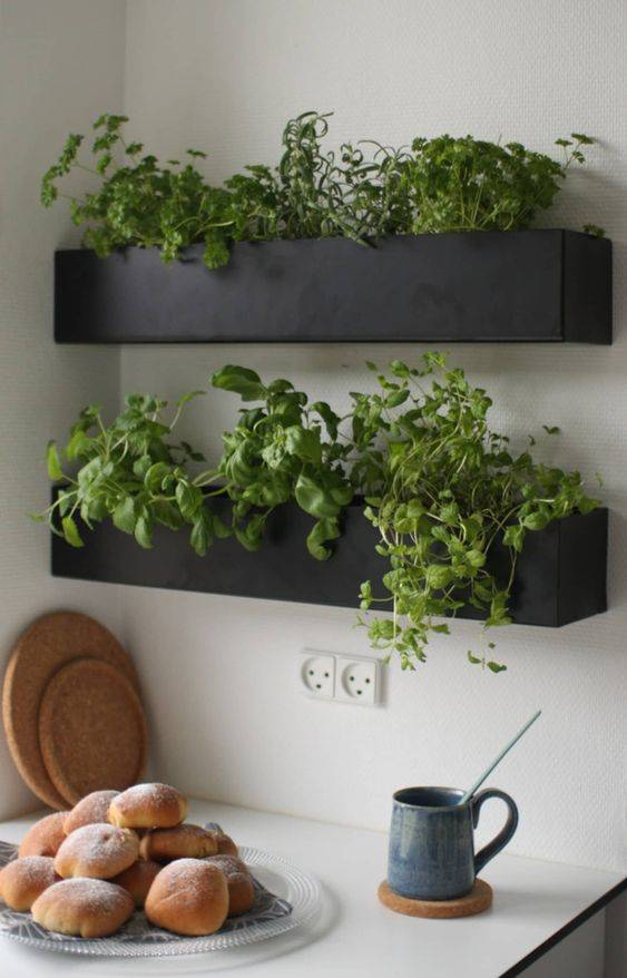 Right Above Your Kitchen Counter - Easy and Clever