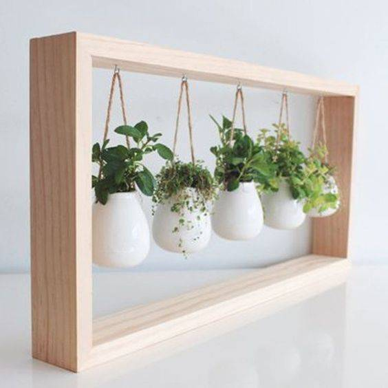 Adorable and Amazing - Herb Planters for Kitchen