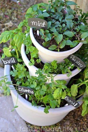 A Raised Garden Bed - Best Indoor Herb Garden