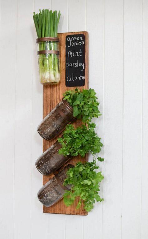 Reimagining Glass Jars - Best Indoor Herb Garden Ideas
