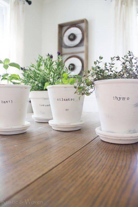Adding Their Names - Tell Your Herbs Apart