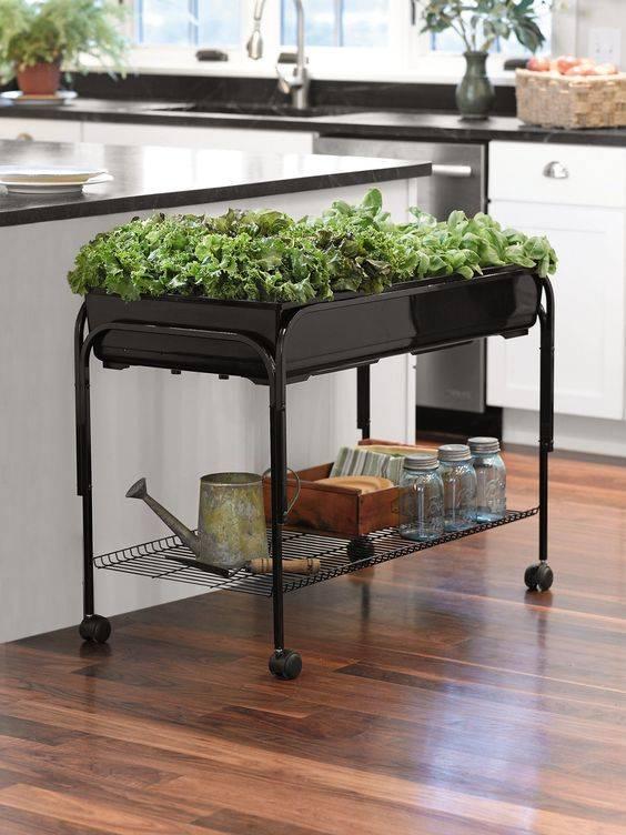 A Mobile Table - Best Indoor Herb Garden