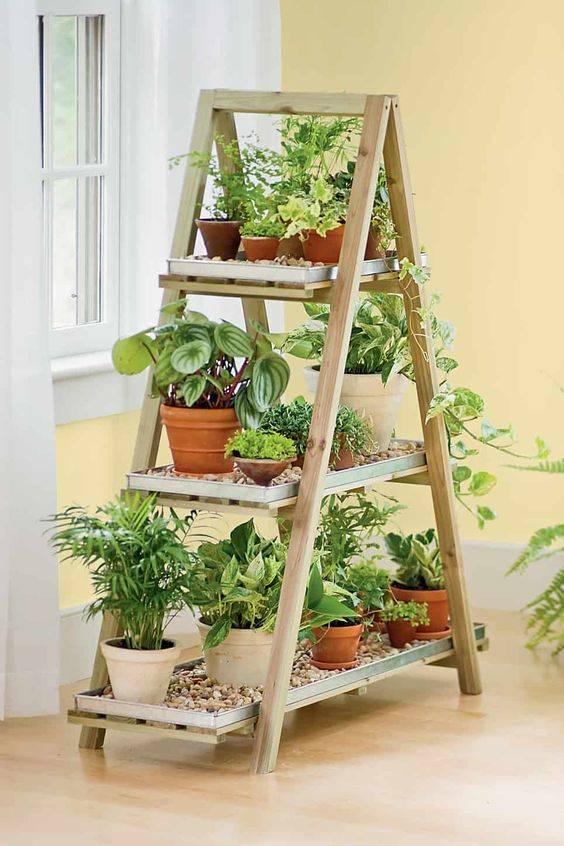 A Whole Ladder - The Best Indoor Herb Garden Ideas