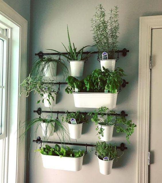 Hanging Up the Herbs - Easy Herb Planters for Kitchen