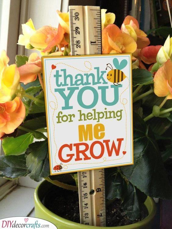 Helping Your Kid Grow - Best Gifts for Preschool Teachers