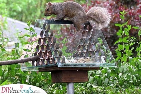 A Plastic Triangular Prism - Squirrel Proof Bird Feeder