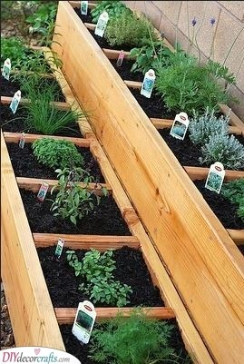 Small Pockets of Plants - Raised Garden Boxes