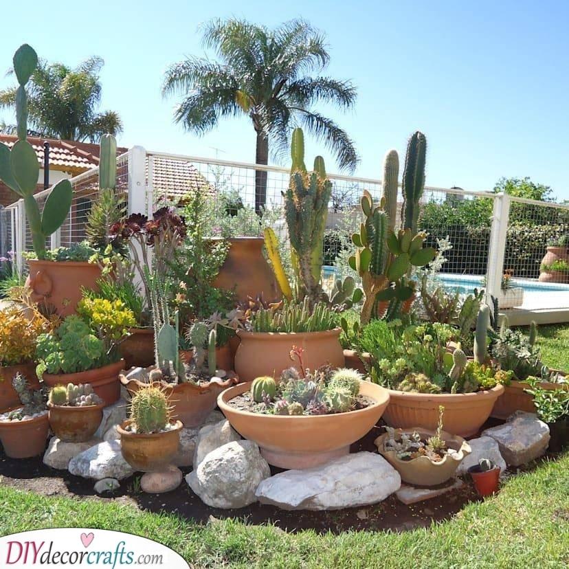 Innovative with Cacti - Rockery Garden Design Idea
