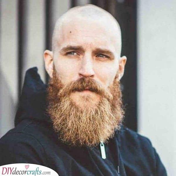 A Viking Vibe - Manly and Rugged